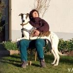 yanos (1)